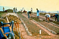 29-1979_X_X_Virginia-Carmel-In-The-Valley-VA-Garden-Project_apprentices-working-in-the-garden_photo-courtesy-The-Chadwick-Society