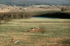 Carmel_023_1978_X_X_the-landscape_1_photo-courtesy-The-Chadwick-Society
