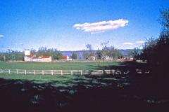 Carmel_024_-1978_X_X_the-landscape_2_photo-courtesy-The-Chadwick-Society