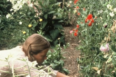 Carmel_031_1979_X_X_apprentices-working-in-the-garden_photo-courtesy-The-Chadwick-Society