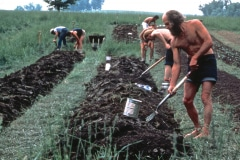 Carmel_037_1979_X_X_apprentices-working-in-the-garden_photo-courtesy-The-Chadwick-Society