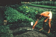 Carmel_042_1979_X_X_apprentices-working-in-the-garden_photo-courtesy-The-Chadwick-Society