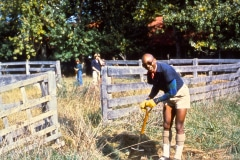 Carmel_055_1979_X_X_apprentices-working-in-the-garden_photo-courtesy-The-Chadwick-Society