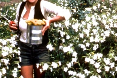 Carmel_058_1979_X_X_apprentices-working-in-the-garden_photo-courtesy-The-Chadwick-Society