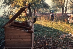 Carmel_063_1979_X_X_apprentices-working-in-the-garden_photo-courtesy-The-Chadwick-Society