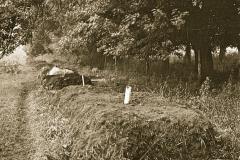 Carmel_064_1979_X_X_The-Alan-Chadwick-Virginia-Garden_photo-courtesy-of-Timothy-Fisher