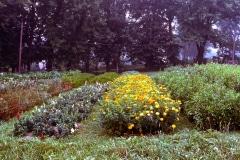 Carmel_083_1979_X_X_The-Alan-Chadwick-Virginia-Garden_photo-courtesy-of-Timothy-Fisher