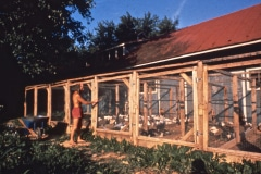 Carmel_099_-1979_X_X_The-Chadwick-VA-Garden-Chicken-Coops_photo-courtesy-The-Chadwick-Society