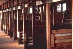 Carmel_100_-1979_X_X_The-Chadwick-VA-Garden-Barn-Work-Stalls_photo-courtesy-The-Chadwick-Society