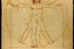 4a-Leonardo-da-Vincis-Drawing-of-the-Geometrical-Man_Charts-Drawings-Graphs