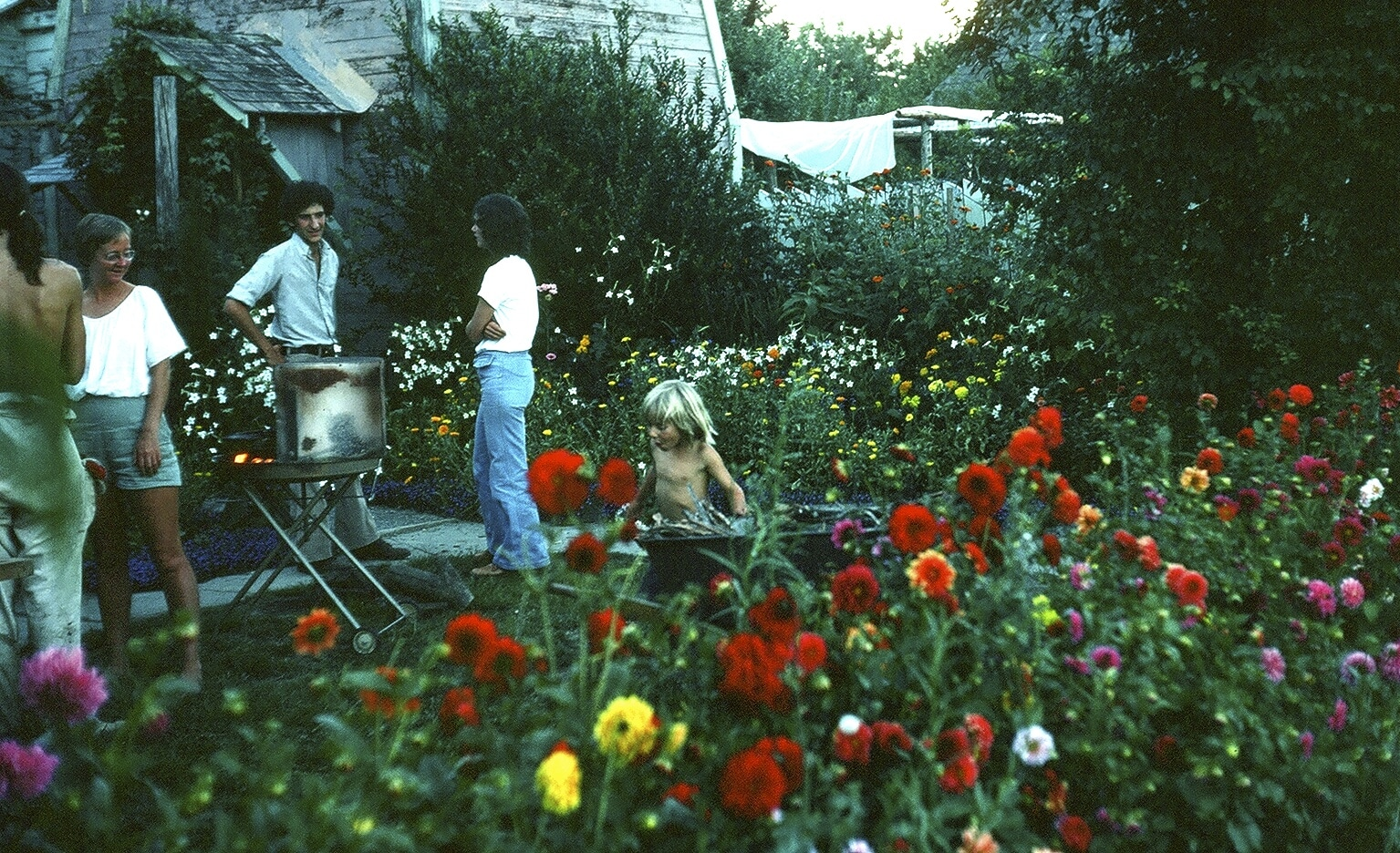 Covelo Village Garden Photo Collection 3 - The Alan Chadwick Archive