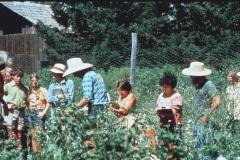 Covelo-05_1976-1977_Apprentices-working-in-Garden-various_02