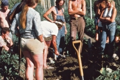Covelo-05_1976-1977_Apprentices-working-in-Garden-various_06