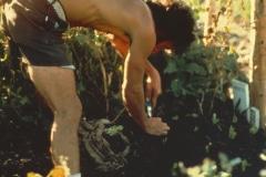 Covelo-05_1976-1977_Apprentices-working-in-Garden-various_19