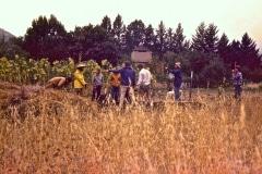 Covelo-05_1976-1977_Apprentices-working-in-Garden-various_21