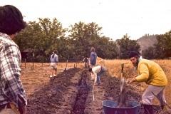 Covelo-05_1976-1977_Apprentices-working-in-Garden-various_22