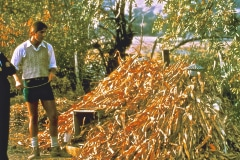 Covelo-05_1976-1977_Apprentices-working-in-Garden-various_25