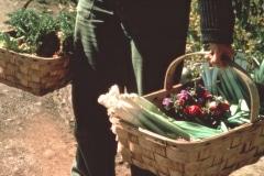 Covelo-05_1976-1977_Apprentices-working-in-Garden-various_44