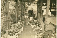 Covelo-05_1976-1977_Apprentices-working-in-Garden-various_45