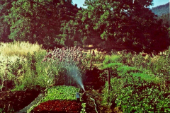 4-1977_X_X_Covelo-CA-Village-Garden-Project_Garden-Beds_Photo-by-Richard-Joos