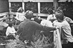 Green-Gulch_02a_1972_X_X_Allen-Kalpin-demonstration_Original-Alan-Chadwick-Garden_photographer-unknown_courtesy-Chadwick-Society