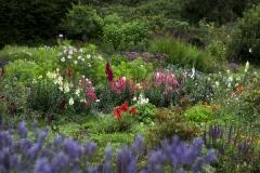 Green-Gulch_20_x_x_x_Flower-Garden