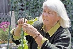 Green-Gulch_29_x_x_x_Wendy-Johnson-Green-Gulch-Farm-gardener