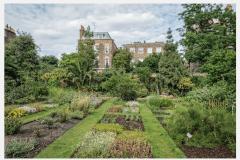 2b-X_X_X_Chelsea-Physic-Garden_Rear-Garden_Photographer-Unkown_Alans-Garden-Influences