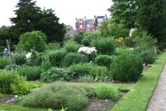 5-X_X_X_Chelsea-Physic-Garden_Materia-Medica-Garden_Photographer-Unkown_Alans-Garden-Influences