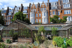 9-X_X_X_Chelsea-Physic-Garden_Greenhouses_photograher-Unknown_Alans-Garden-Influences