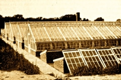 15-X_X_X_French-Intensive-Gardening-History_French-Gardening-Cold-Frame-Hot-Bed-and-Cloche-Work__3_France_date-and-photographer-unknown_Alans-Garden-Influences