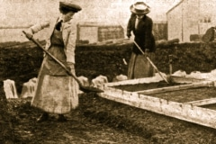 18-X_X_X_French-Intensive-Gardening-History_French-Gardening-Cold-Frame-Hot-Bed-and-Cloche-Work_6_France_date-and-photographer-unknown_Alans-Garden-Influences