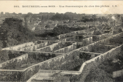 8-X_X_X_French-Intensive-Gardening-History_Fruit-Growing-within-walls-for-protection_1_France_date-and-photographer-unknown_Alans-Garden-Influences