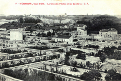 9-X_X_X_French-Intensive-Gardening-History_Fruit-Growing-within-walls-for-protection_2_France_date-and-photographer-unknown_Alans-Garden-Influences