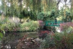6a-3-Giverny-Garden-France_of-Claude-Monet_Alans-Garden-Influences