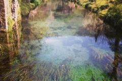 14-Ninfa-Gardens-Italy_Alans-Garden-Influences