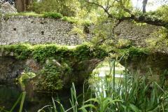 20-Ninfa-Gardens-Italy_Alans-Garden-Influences