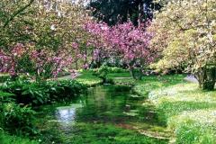 21-Ninfa-Gardens-Italy_Alans-Garden-Influences