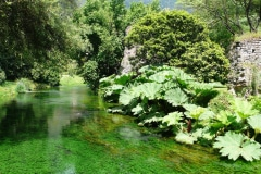 25-Ninfa-Gardens-Italy_Alans-Garden-Influences