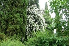28-Ninfa-Gardens-Italy_Alans-Garden-Influences