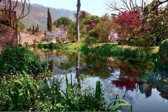 3-Ninfa-Gardens-Italy_Alans-Garden-Influences