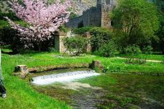 4-Ninfa-Gardens-Italy_Alans-Garden-Influences