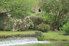 6-Ninfa-Gardens-Italy_Alans-Garden-Influences