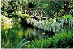 8-Ninfa-Gardens-Italy_Alans-Garden-Influences