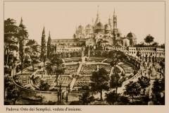 2-X_X_X_Padua-Botanic-Garden-Italy_Alans-Garden-Influences