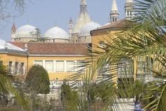 5-X_X_X_Padua-Botanic-Garden-Italy_Alans-Garden-Influences