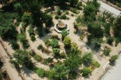 8-X_X_X_Padua-Botanic-Garden-Italy_Alans-Garden-Influences