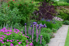 13a-Vita-Sackville-Wests-Sissinghurst-Gardens_Purple-Flower-Garden_4_Alans-Garden-Influences