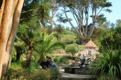 3-Alans-Garden-Influences_Tresco-Abbey-Gardens_Scilly-Isles-England