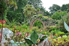 6-Alans-Garden-Influences_Tresco-Abbey-Gardens_Scilly-Isles-England